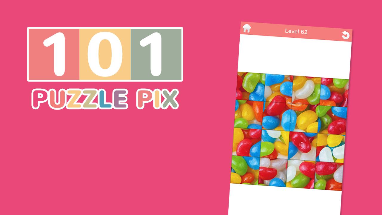 101 Puzzle Pix
